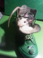 Ratterie Mi-rat-cle
