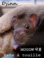 Mogow1998