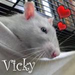 Vicky23