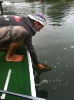 Ben Fish'in