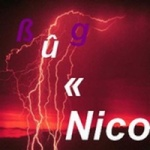 Bug.Nico