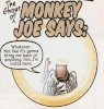 MonkeyJoe