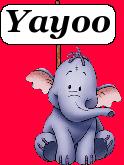 Yayoo