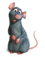 Ratatouille91