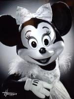 Minnie&co