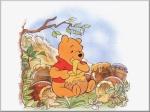 *Winnie the Pooh*