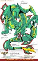 Domador Dragon