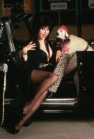 Elvira (blonde)