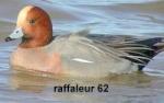 raffaleur