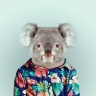 koala_el_koala_navideño