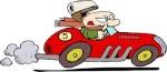 Racefan