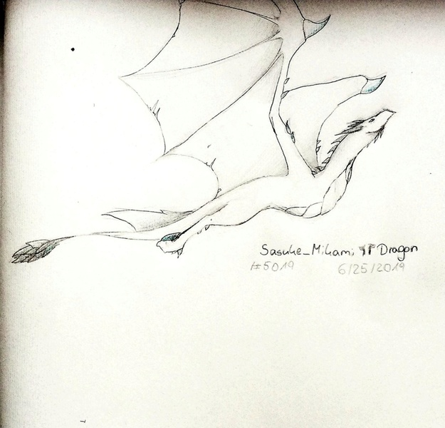 Contest-4-Dragon-paper-sketch-only