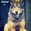 Akame`