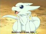 Akita Dragon