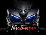 NeoSlugman