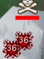 RS PICTURE GOAL (buddy kit) - (ps: great for ironman goals