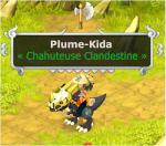 Plumette