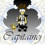 Capitainej
