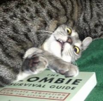 zombie survival guide cat