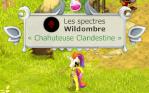 Wildombre
