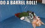 DO A BARREL ROLL !