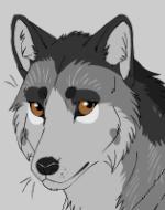 Wolf Magic 11-36