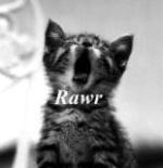 Saigneur_Meow