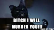 :Murder: