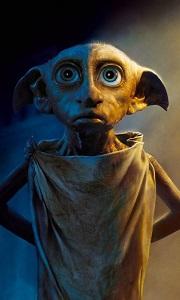 Elfus Potter