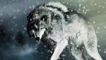 זאב כתום