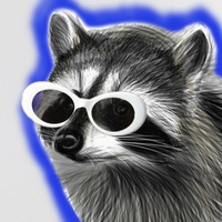 Raccoon with CLOUT