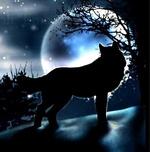 الذئب المستئذب