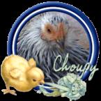 Choupy