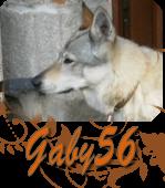 Gaby56