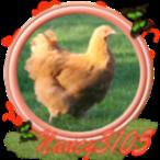 Nancy3105