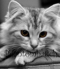 Phantomhauch