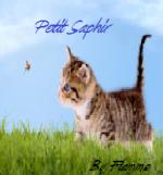 Petit Saphir