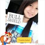 BullShield