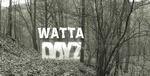watta66