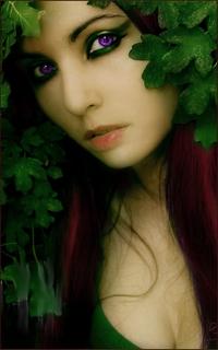 Alona Solywer