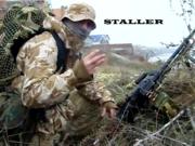 Staller