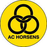 Horsens Hooligans Fan