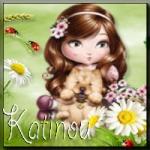 katinou18406