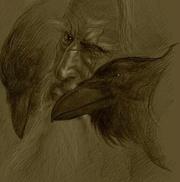 raven147