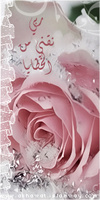 عبير الورد