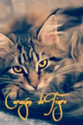 Corazón de Tigre