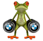 Frog_be