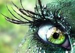kitty green