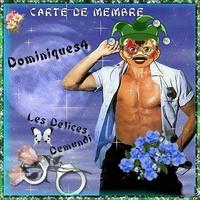 dominiques4