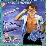 Marcus3368